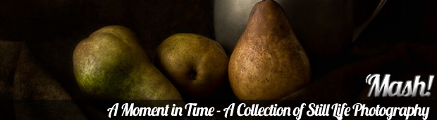 a moment in time collection of still life photography A Moment in Time – A Collection of Still Life Photography