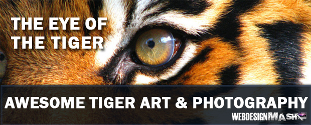 eye of the tiger The Eye of the Tiger   Awesome Tiger Art & Photography