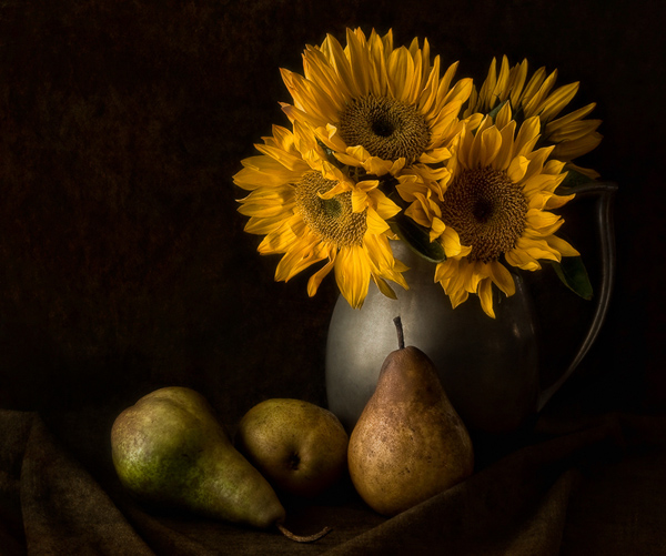 still life photography 040 A Moment in Time – A Collection of Still Life Photography